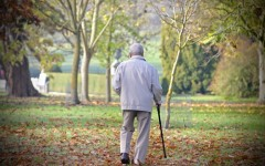 How can you protect your residents from falls?